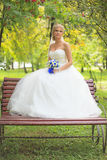 Bride. Beautiful bride outdoors. Wedding Day stock photos