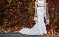 Bride in a beautiful wedding dress on a background of red leaves Royalty Free Stock Image