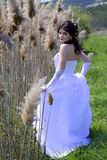 Bride. Beautiful bride in a white dress Royalty Free Stock Images