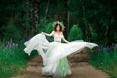 The bride in a beautiful white dress and a wreath of Forest flow. Ers royalty free stock images