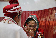 Bride being fed ladoo(sweet). By groom during varmala(garland) ceremony on wedding day in Shimla, Himachal Pradesh, India, Asia Stock Images