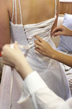Bride being laced up into wedding dress. Bride being laced up into her wedding dress by multiple helpers Royalty Free Stock Image