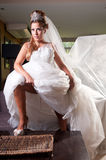 Bride with big veil Royalty Free Stock Image
