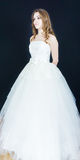 Bride on black background. dress person Stock Image