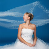 Bride on blue Stock Photography