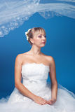 Bride on blue Royalty Free Stock Photo