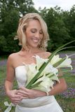 Bride Bouquet Stock Photography