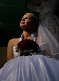 Bride with a bouquet. Of red roses Stock Image