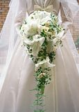 Bride and Bouquet-9 Royalty Free Stock Photography