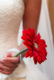 The bride with a bouquet of flowers Royalty Free Stock Images