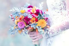 Bride bouquet in the hand of a woman. Colorful wedding bouquet, daffodils, gerbera, roses in bride hand with lacy white wedding dress detail Stock Photography