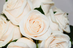 Bride bouquet with roses Stock Images