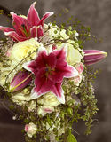 Bride bouquet Stock Image