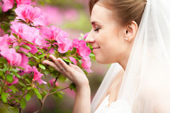Bride bride smelling flowers at park Royalty Free Stock Photos