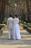 Bride and bridegroom Stock Photography