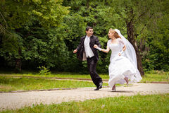 Bride and bridegroom running along alley in park. Happy bride and bridegroom running along the alley in the park stock photography