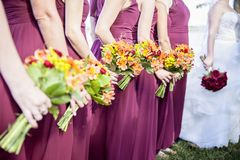 Bride and Bridemaids holding bouquets stock image