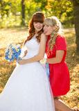 Bride and bridesmaid having fun at autumn park Stock Images