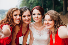 The bride and bridesmaids beautiful girl in red Royalty Free Stock Image
