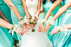 Bride and bridesmaids. Dressed in a blue dress royalty free stock photography