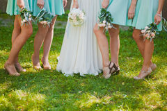 Bride and bridesmaids legs. Shoe stock photo