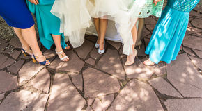 Bride and bridesmaids legs Stock Images