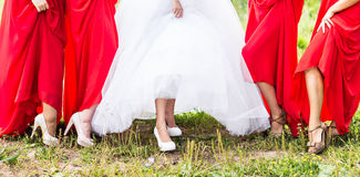Bride and bridesmaids legs Royalty Free Stock Image