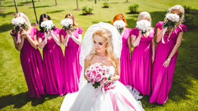 Bride with bridesmaids in a park Stock Photos