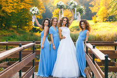Bride with bridesmaids. On the park on the wedding day royalty free stock photo