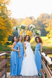 Bride with bridesmaids. In the park on the wedding day stock images
