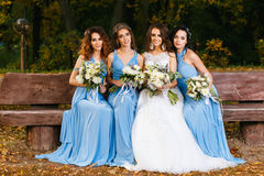 Bride with bridesmaids. In the park on the wedding day stock photography