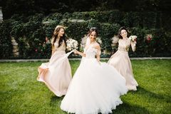 Bride with bridesmaids on the park on the wedding day. Laughing bride and bridesmaids tell funny stories standing on footsteps outside stock photography