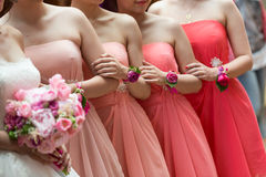 Bride and bridesmaids. Row of bride and bridesmaids stock photo