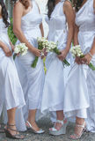 Bride and bridesmaids. Wedding photo of a bride with her bridesmaids, holding flower bouquets stock images
