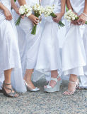 Bride and bridesmaids. Wedding photo of a bride with her bridesmaids, holding flower bouquets stock photos