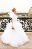 Bride on a bridge Stock Photography