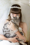 Bride with a cat Stock Photos
