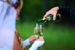 Bride with champagne. Groom pouring champagne, bride holds glasses, focus on glasses and bottle, blurred green background Royalty Free Stock Photos