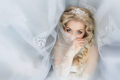 Bride close up which was covered with a veil Royalty Free Stock Photos