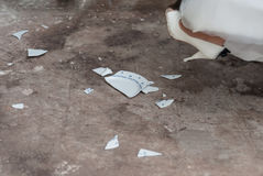 Bride crashing a plate for good luck Royalty Free Stock Photo