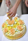 Bride cutting cake Royalty Free Stock Images