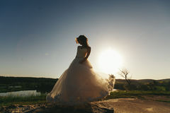 Bride dance in the rays of summer sun Royalty Free Stock Images