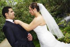 Bride dandify groom Stock Photos