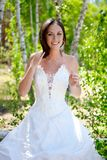 Bride with dark-brown hair Stock Images