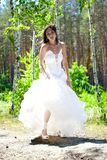 Bride with dark-brown hair Stock Image