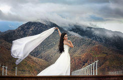 Bride in desert Royalty Free Stock Photos