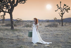 Bride Desperate. Desperate Bride late in the Desert with luggage stock photography