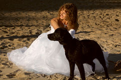 Bride and dog Stock Photo