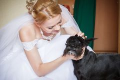 Bride with dog Stock Photography
