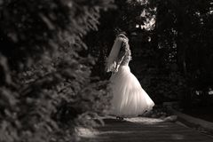 Bride doing pirouette in the park Stock Photo